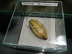 Pb130760